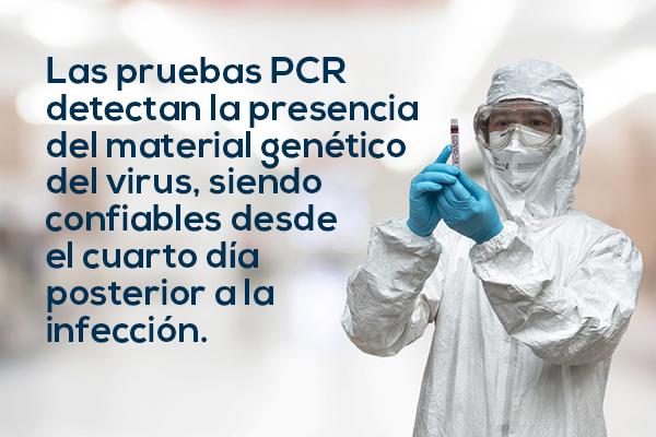 Dentro del PRASS es importante entender que las pruebas PCR detectan la presencia del material genético del virus, siendo confiables desde el cuarto día posterior a la infección